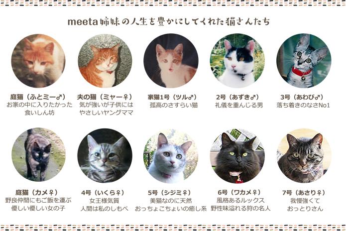 猫さんたち